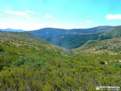 Hayedo Montejo-Cuerda Pinilla; excursiones cerca de madrid senderistas singles madrid senderismo